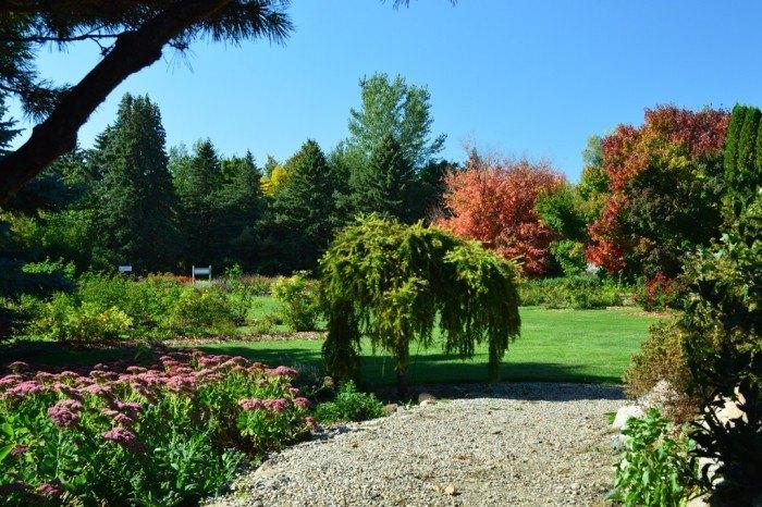 McRory Gardens