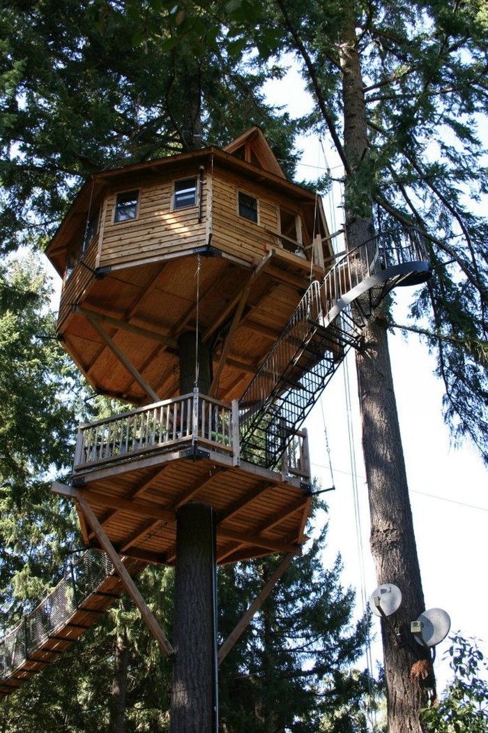 15 Most Amazing Treehouses In America