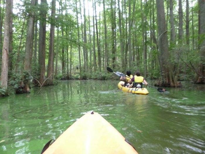 Trap Pond Kayak