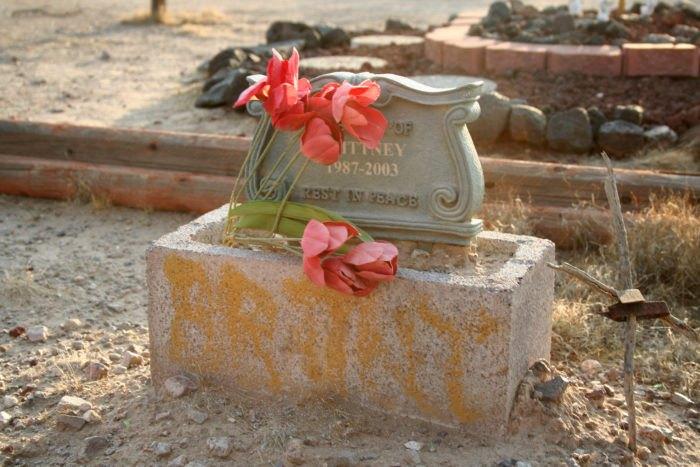 haunted pet cemetery