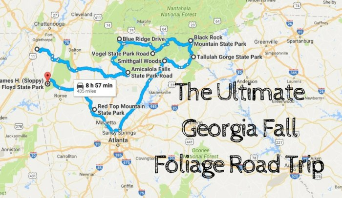 The Best Fall Foliage In Georgia Can Be Seen On This Road Trip