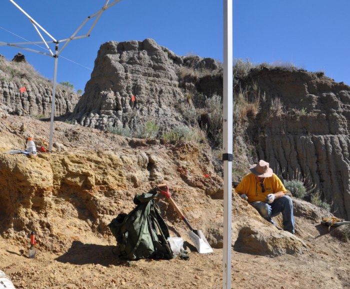 Dig For Real Dinosaur Fossils On This Tour In South Dakota