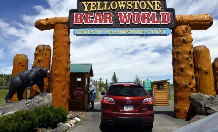 Yellowstone Bear World - Idaho Wildlife Safari Experience