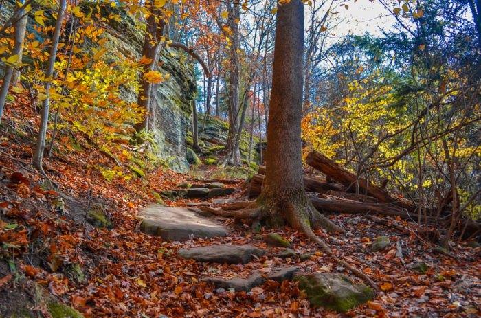 Natural wonders - Virginia Kendall Ledges
