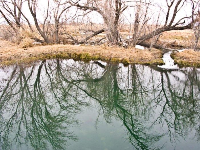 Frog Pond Hot Springs