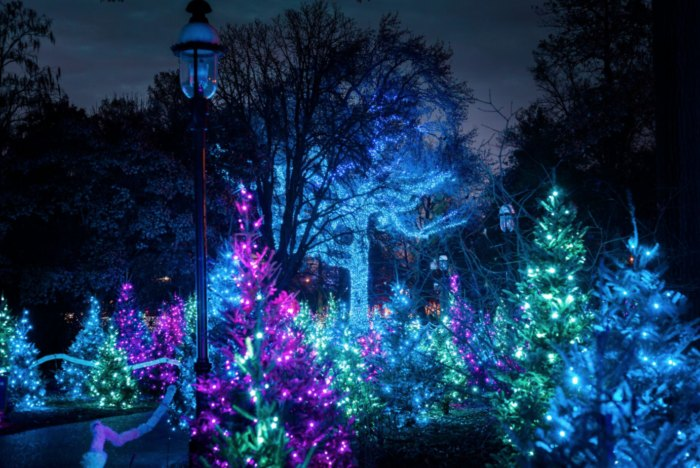 Christmas Light Displays In St Louis.The 11 Most Magical Christmas Light Displays In Missouri