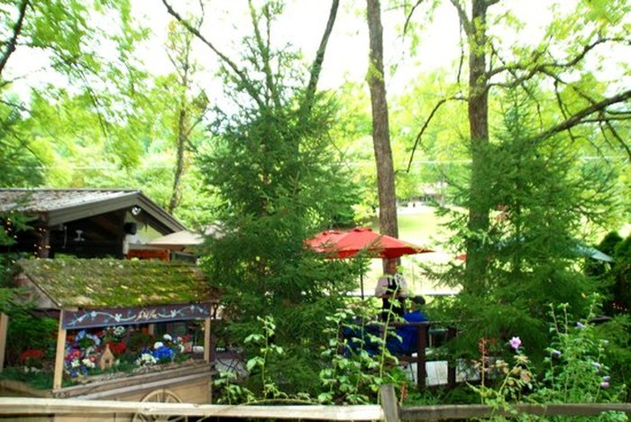 Wild Plum Tea Room In Tennessee Is Located In The Most
