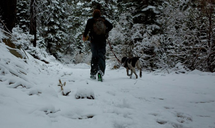 Ophir Creek Trail