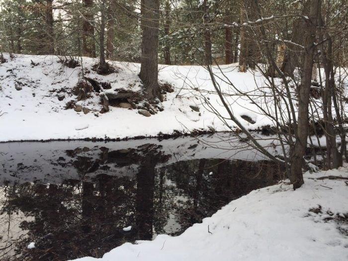 Lower Galena Creek Trail