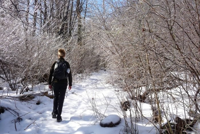 9 Best Winter Hikes Near Washington DC