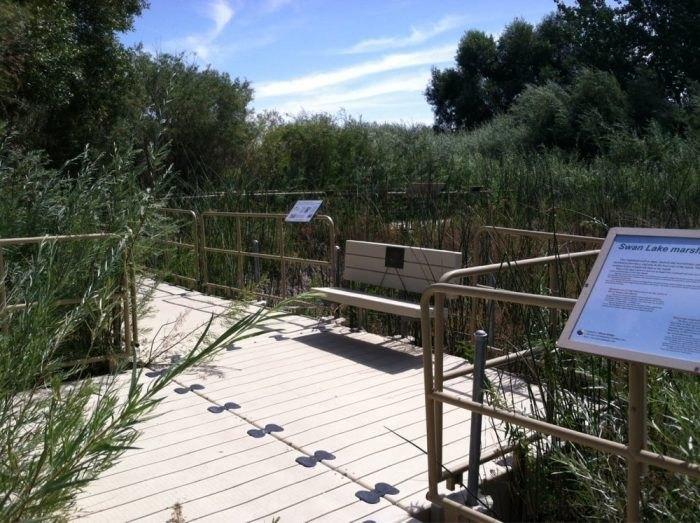 Swan Lake Nature Study Trail, Reno