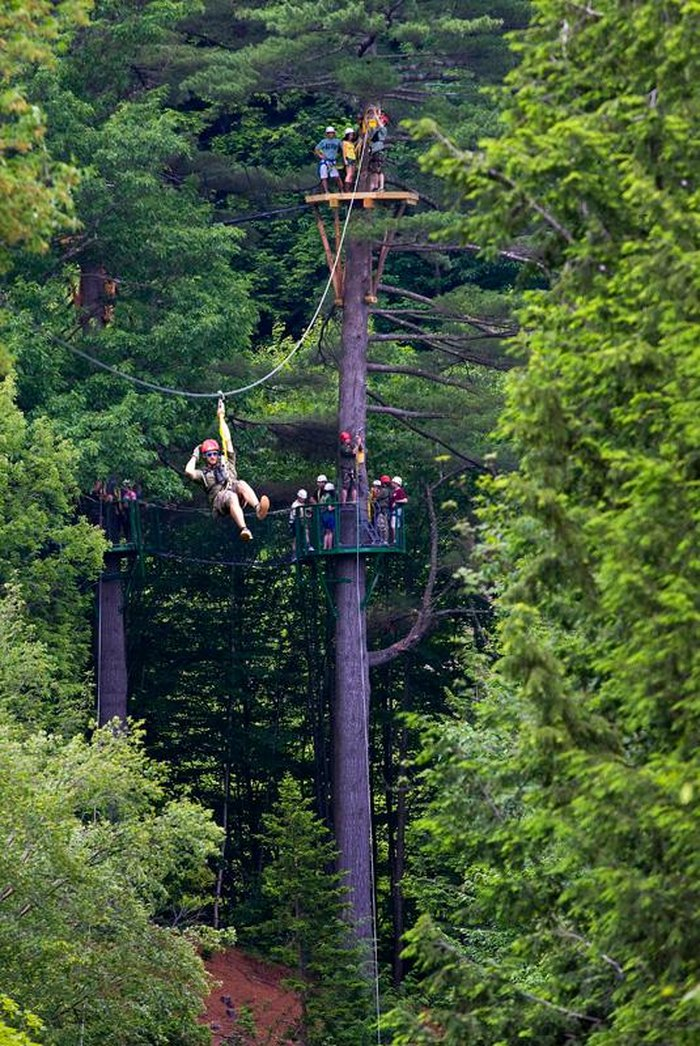 Why You Need To Visit Alpine Adventures In New Hampshire
