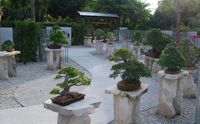 Heathcote Botanical Gardens: 10 Perfect Places In Florida For People Who Hate Crowds