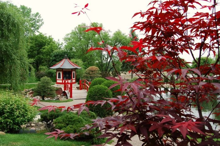 You'll find the Normandale Japanese Garden in an unexpected location. It's on the grounds of Normandale Community College.