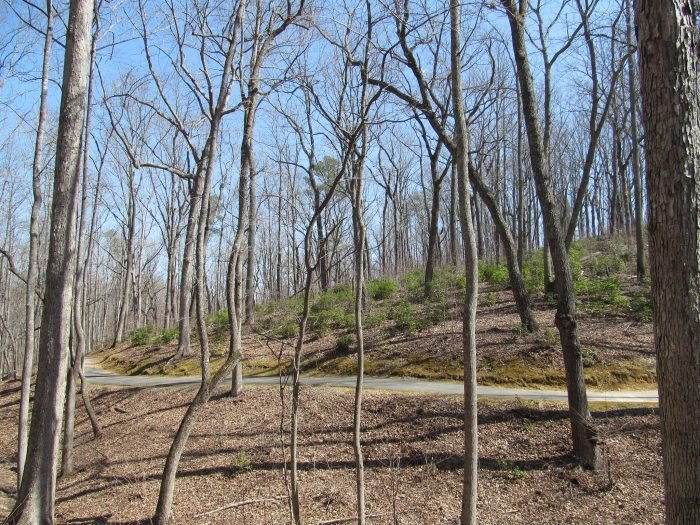 Kings Mountain National Military Park is A Former Volcano In