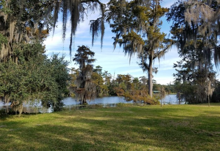 6 Best Under-Appreciated State Parks Near New Orleans