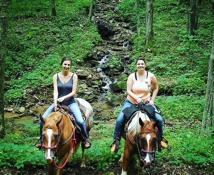 Wolf Laurel Stables Offers Great Horseback Riding In North
