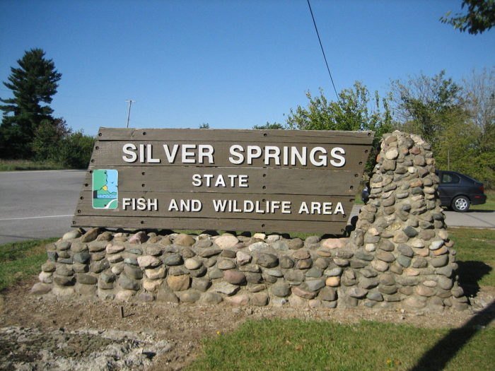 Silver Springs State Park Has The Best Natural Spring-Fed ... on giant city state park, kankakee river state park, sand ridge state park il, pyramid state park il, apple river canyon state park, crab orchard national wildlife refuge, castle rock state park, shabbona lake state park il, dixon springs state park, beaver dam state park, moraine view state park il, starved rock state park il, shabbona lake state park, lowden state park, moraine hills state park, clinton lake state recreation area, illinois beach state park, rock cut state park, cave-in-rock state park, jim edgar panther creek state park il, matthiessen state park il, matthiessen state park, illini state park, starved rock state park, jim edgar panther creek state fish and wildlife area, ferne clyffe state park,