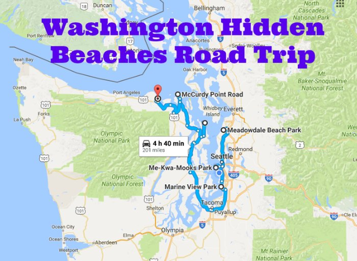 The Best Beaches In Washington State Road Trip
