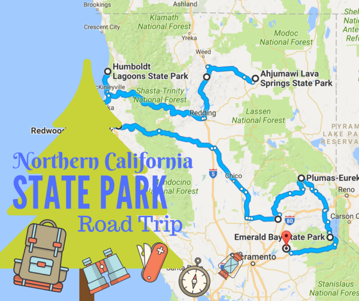 11 Unforgettable Road Trips To Take In Northern California ... on redwood national park map, fresno map, florida map, wine country, silicon valley, lake county map, california central valley, san francisco bay area, san francisco bay, coastal california, santa barbara map, highway 101 map, greater los angeles area, sierra nevada, orange county, bay area map, san francisco area map, big sur, denver area map, redwood city, lake tahoe, berkeley map, palo alto map, east bay map, eastern california, illinois map, shasta county, southern california, muir woods national monument, vacaville map, monterey bay, big sur map, humboldt county map, monterey map, highway 1 map, san francisco on map, daly city map,