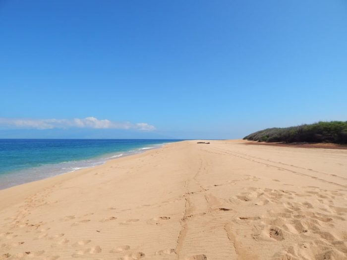 Lanai's Secret Polihua Beach Will Make Your Summer Complete