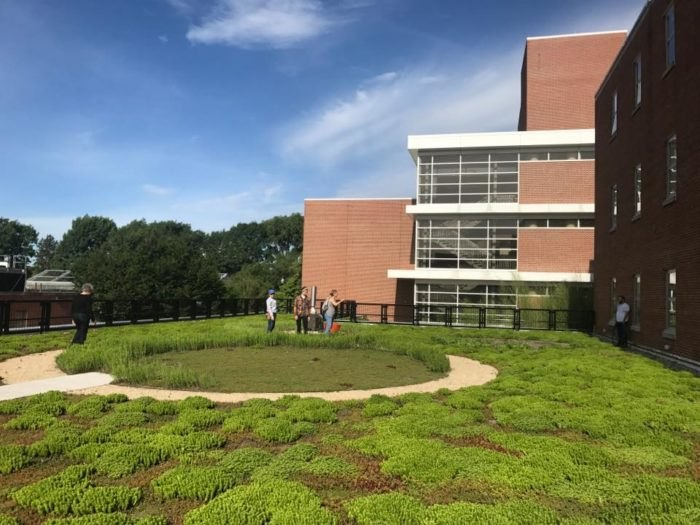 Rooftop Garden In Ohio The Green Roof At Ohio State