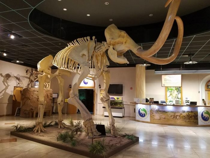10 Inexpensive Family Friendly Attractions In Arizona