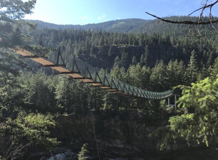 Swinging bridge in montana — pic 11