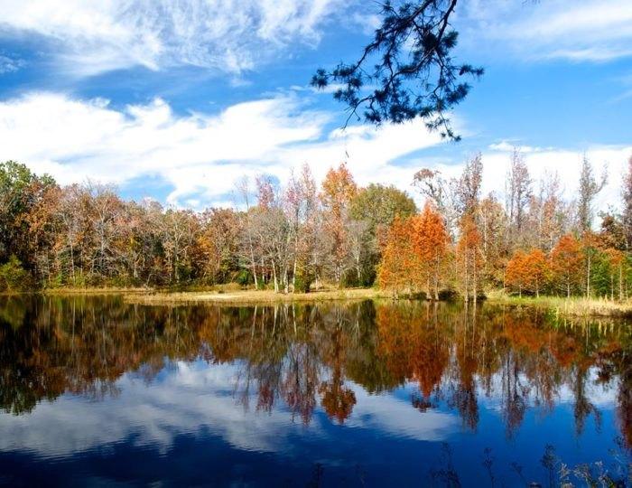 Image result for Lake Bob Sandlin State Park autumn