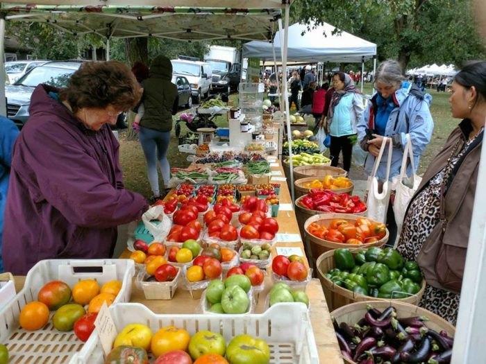 Elmwood Village Farmers Market In The Fall Is Amazing
