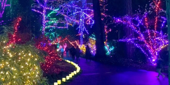 Oregon Gardens Christmas.The Grotto Is A Breathtaking Oregon Church That Is