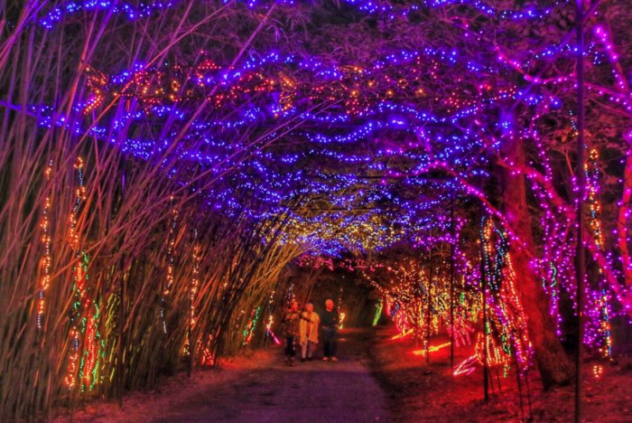Alabama Christmas.Magic Christmas In Lights At Bellingrath Gardens And Home Is