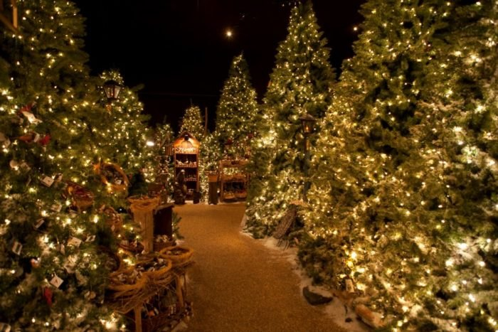 Christmas In Boston Images.7 Best Christmas Towns Around Boston 2017