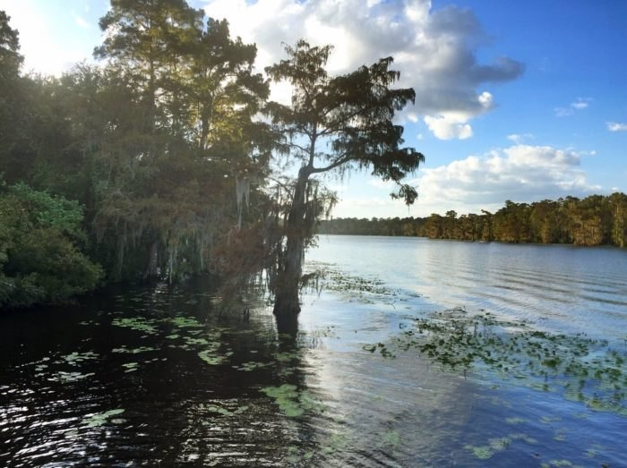 7 Under The Radar Parks In Louisiana To Visit This Summer