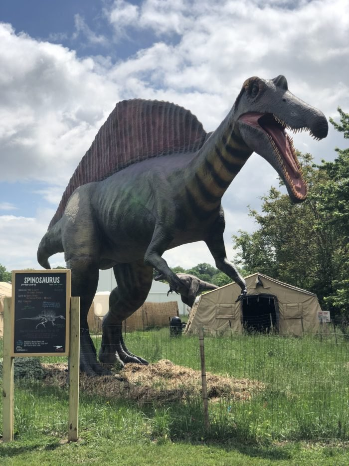 This Dinosaur Park In New Jersey Is A Perfect Family Summer