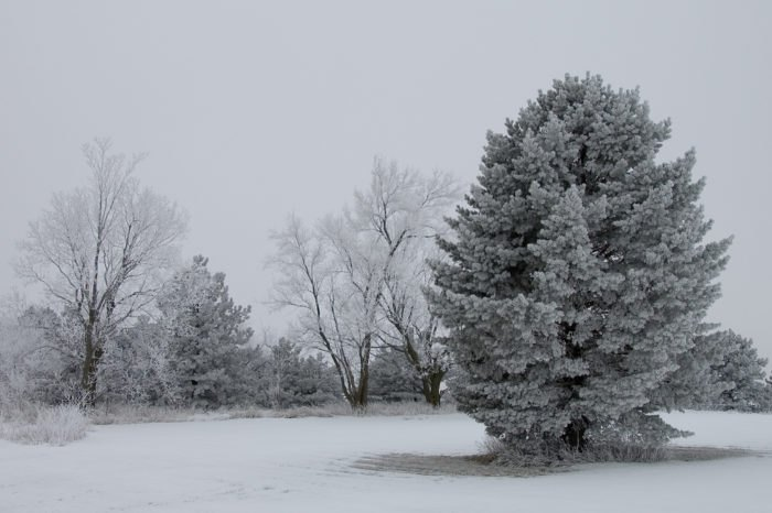 Winter 2018-2019 May Be Colder And Snowier Than Usual In