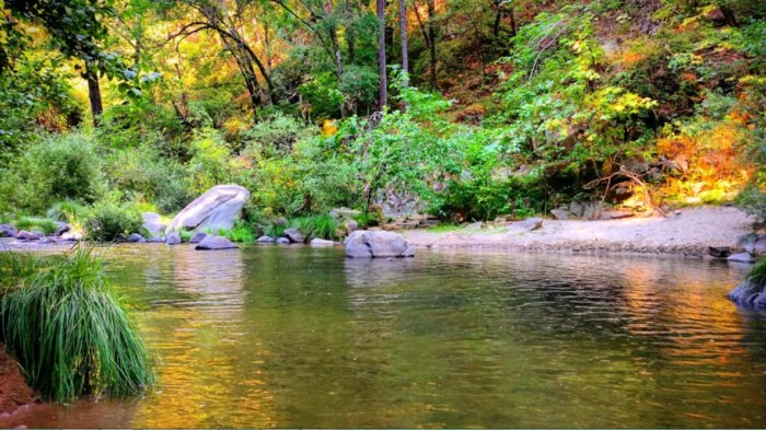 Garden Of Eden Is A Swimming Hole In Northern California