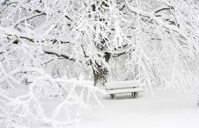 2019 Farmers' Almanac Predicts A Cold And Snowy Massachusetts Winter