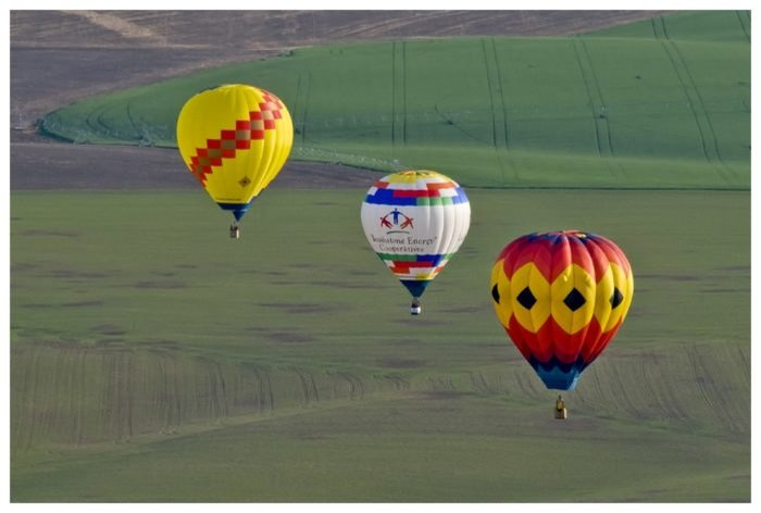 Spend The Day At Walla Walla Balloon Stampede In Washington