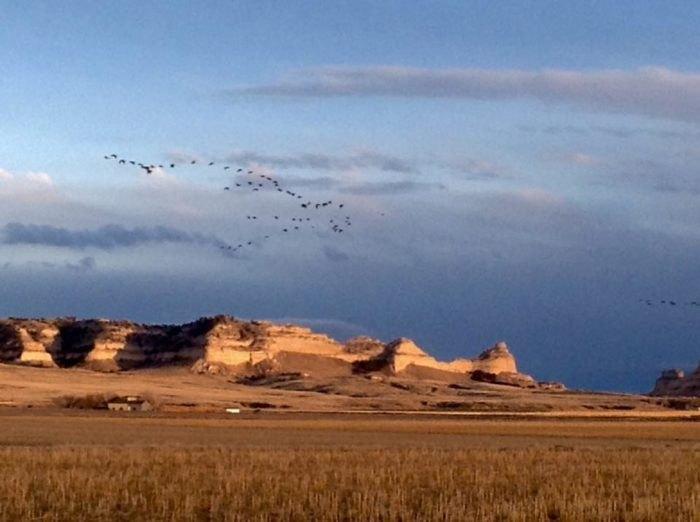 Barn Anew Bed And Breakfast In Nebraska Is Beautiful In ...
