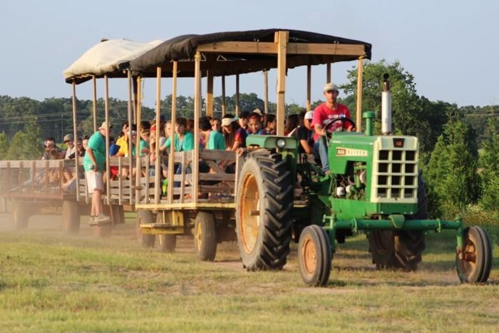 Elgin Christmas Tree Farm.6 Of The Best Pumpkin Patch Hayrides To Visit In Texas This Fall