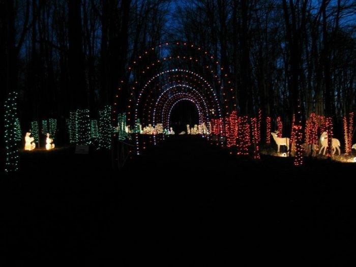Christmas Light Display Near Me.The Christmas Light Display Near Pittsburgh That Will Simply
