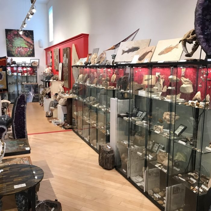 Dinosaurs And More Is A Uniqe Shop In New Mexico