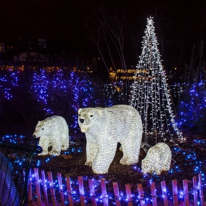 Christmas Light Displays In St Louis.Saint Louis Zoo This Zoo In Missouir Has A Spectacular