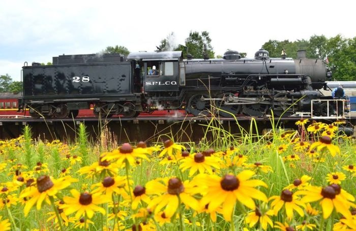 Four Hour Spring Train Ride On Texas State Railroad
