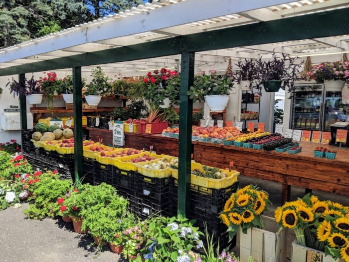 Briermere Farms On Long Island Has The Best Pies In New York