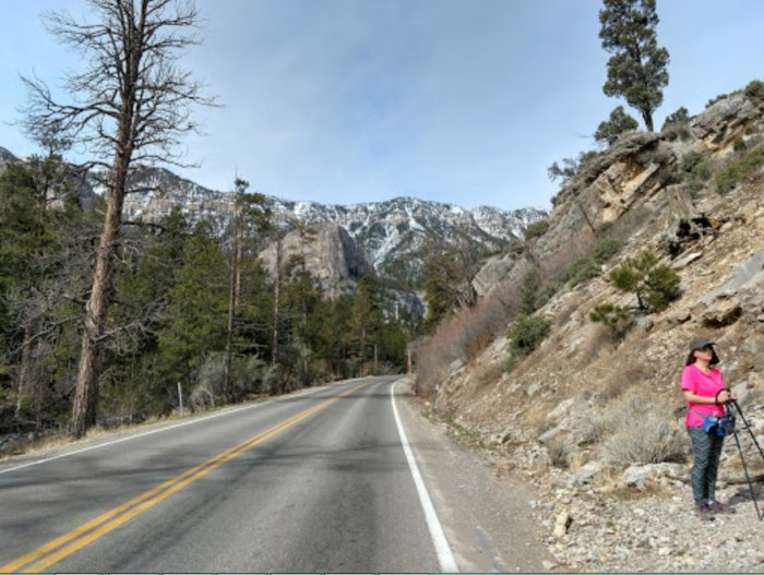 This Nevada Forest Hike Leads You Straight To An Abandoned Mine