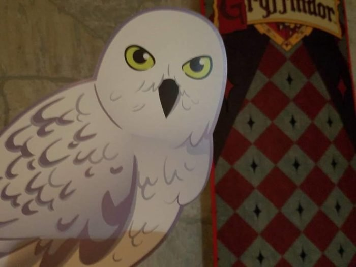 This Harry Potter Escape Room Near Pittsburgh Is Amazingly Fun