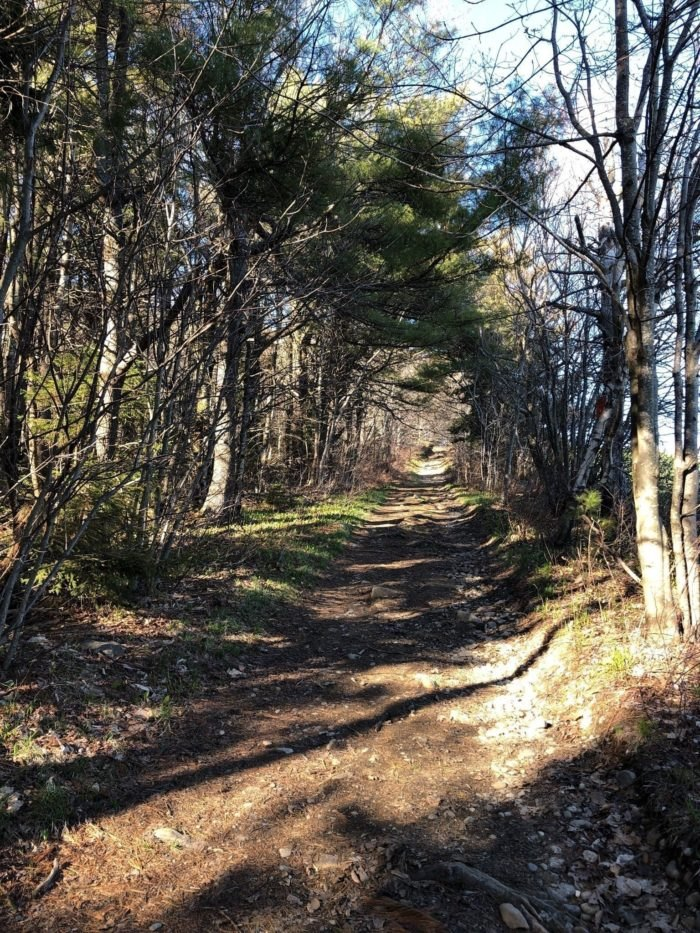 Best Hiking Trails In NJ | Best Places to Hike in The