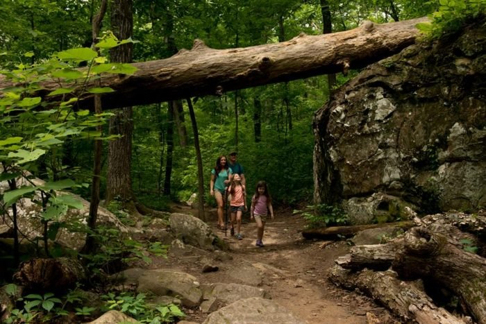 Seven Hollows Trail Takes You Through An Enchanting Forest